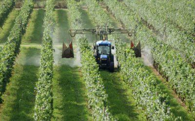 Aggiornamento per uso di prodotti fitosanitari (formazione obbligatoria). Settembre-Ottobre 2020