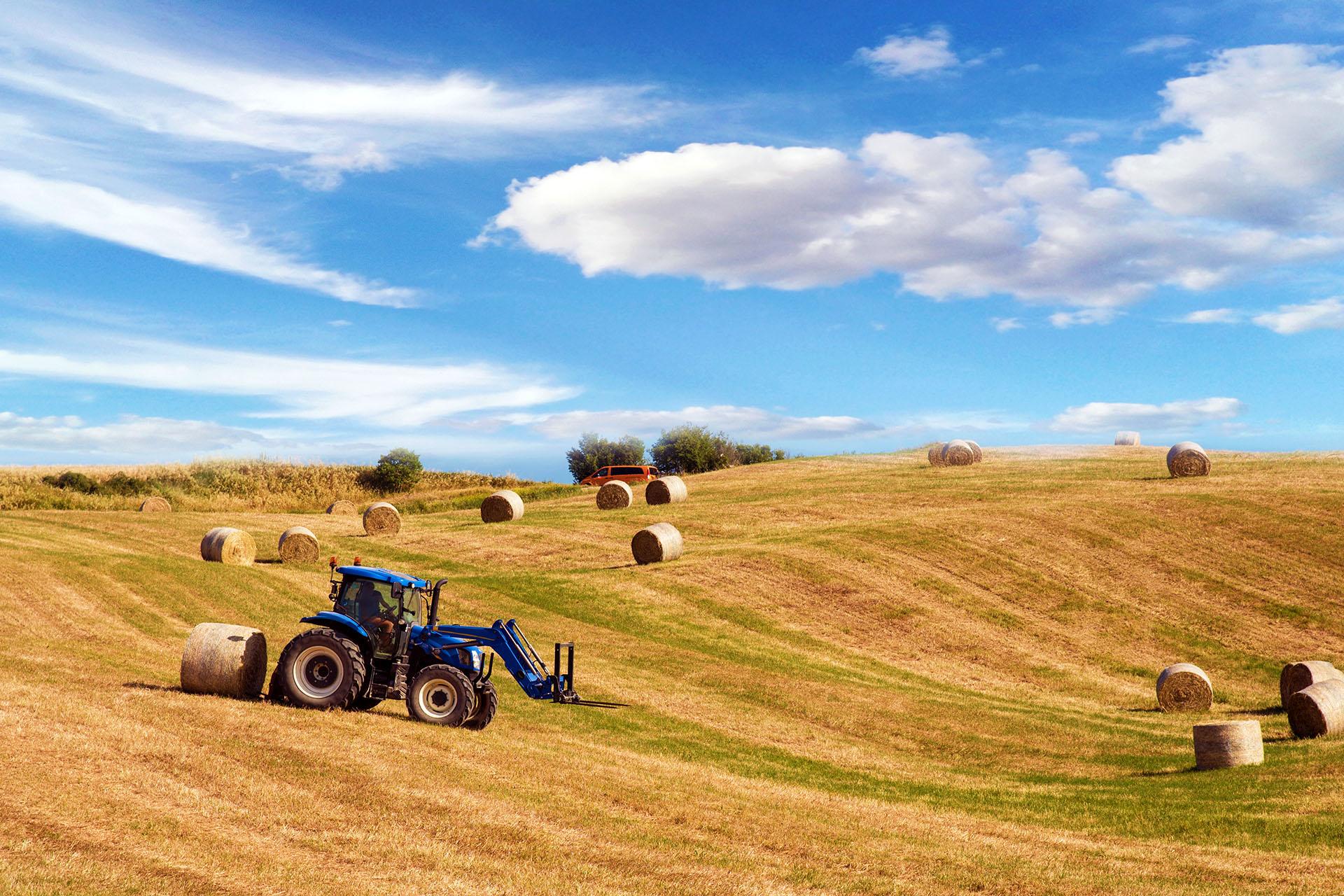 Ottobre 2020. Corso di abilitazione alla guida del trattore. Siena e Monteriggioni