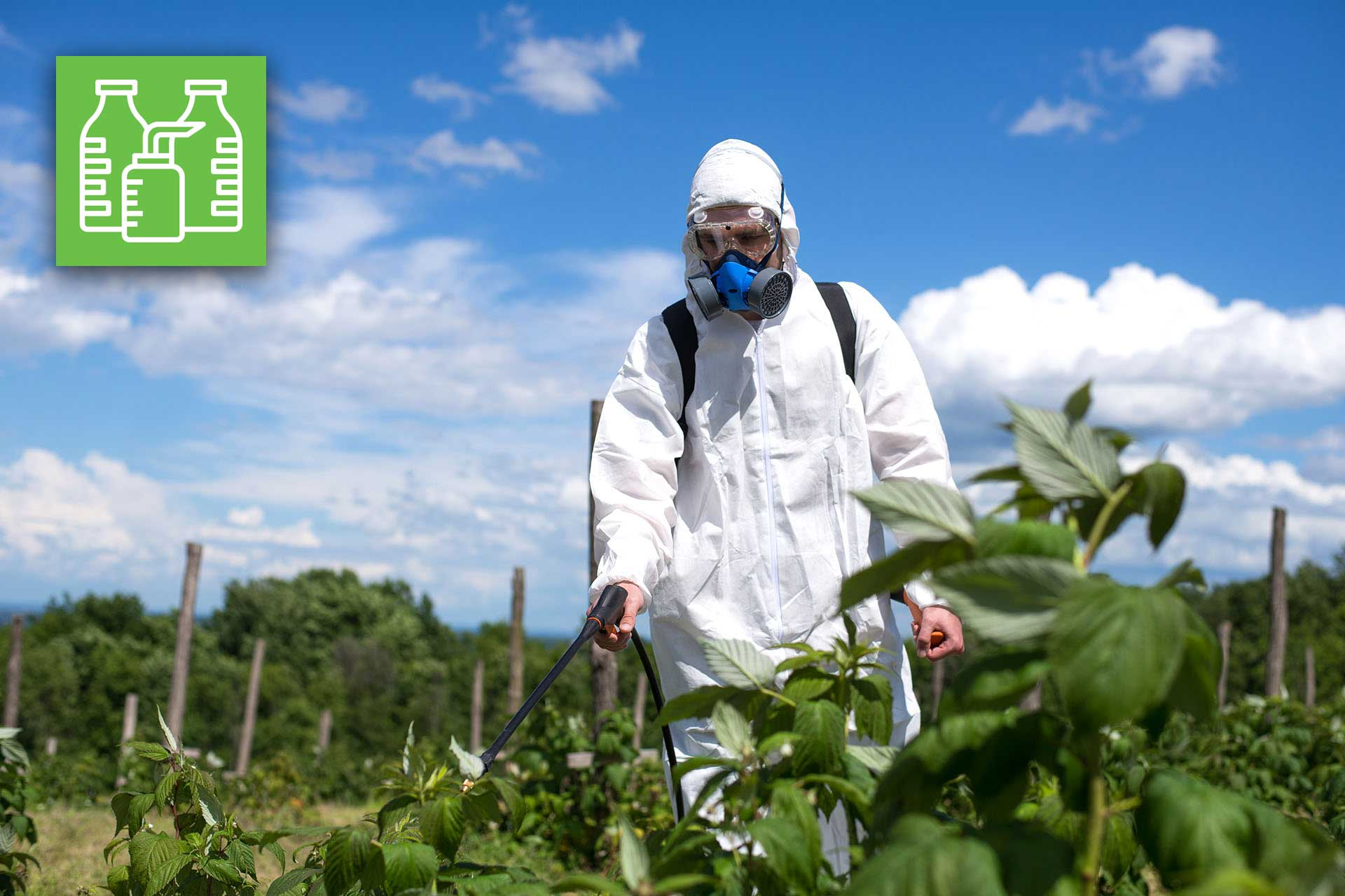 Corso di primo rilascio per consulenti di prodotti fitosanitari (25 ore, marzo-aprile 2021)