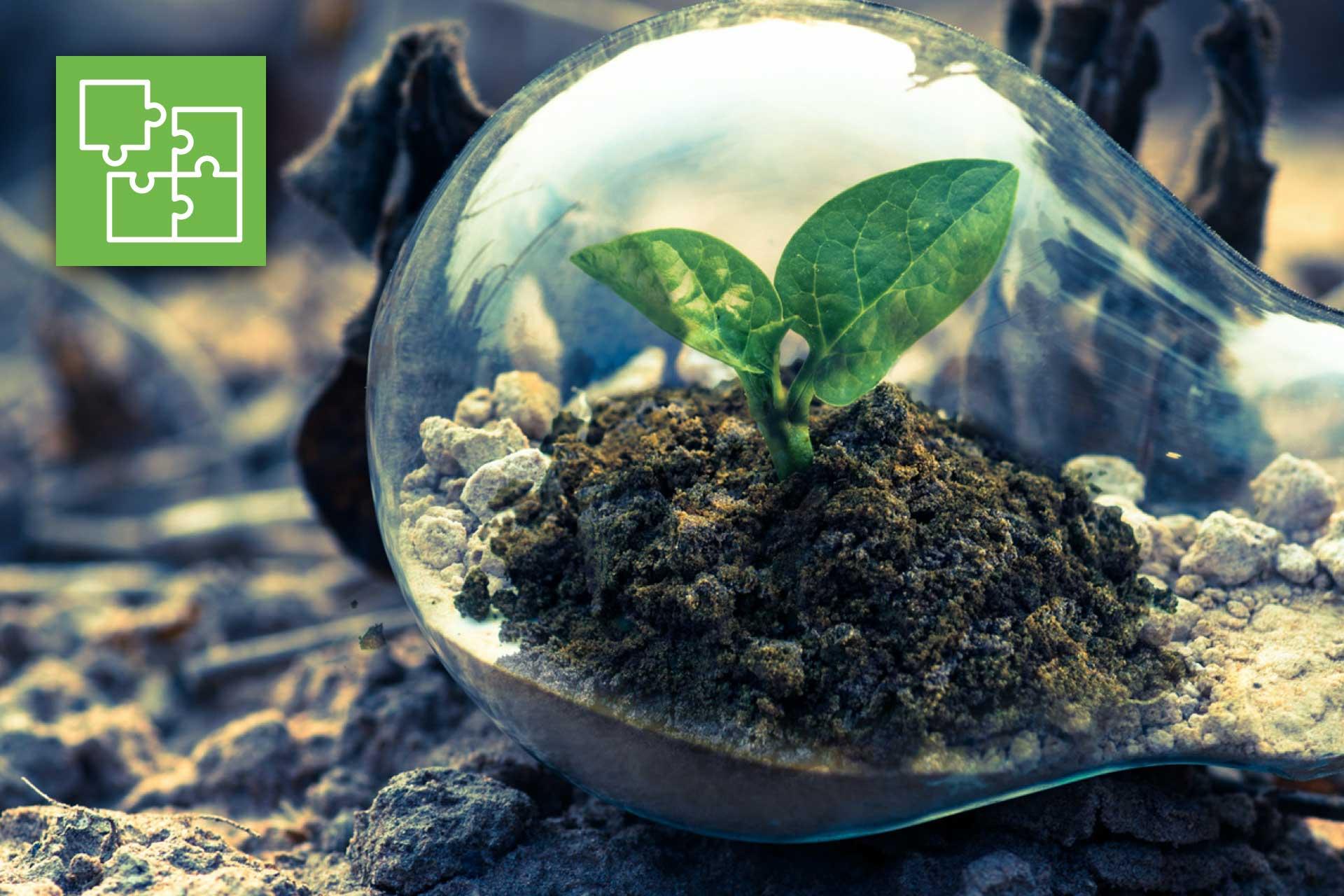 """Corso gratuito: """"Lo sviluppo delle agrienergie come opportunità per le imprese agricole"""""""